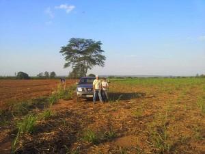 cadastro-ambiental-rural-car-zamaro